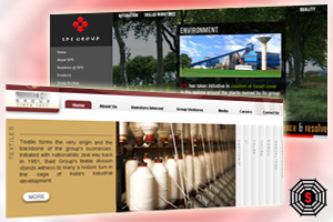 Website Development and Redesigning for Major Indian Clients