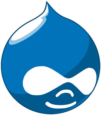 Why You Should Use Drupal Services for Hassle Free Launching of Websites